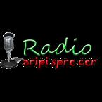 Radio Aripi Spre Cer Romania