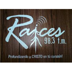 Raices FM 98.3 FM Dominican Republic, Nisibon
