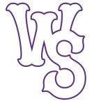 Winston-Salem Dash Baseball Network USA