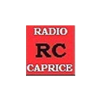 Radio Caprice Industrial Metal Russia
