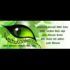 Nethulanka.com Radio Sri Lanka