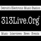 313Live.Org United States of America