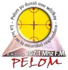 Radio Pelom 102.1 FM Chile, Temuco