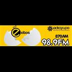 Éxitos 98.9 FM Mexico, Irapuato