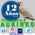 Radio Mapuche Aukinko Chile, Temuco