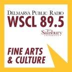 WSCL 89.5 FM USA, Salisbury