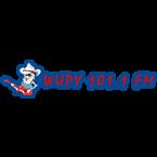 Y-101 101.1 FM USA, Ontonagon