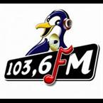 Pinguin FM Bali 103.6 FM Indonesia, Denpasar