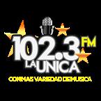 102.3 La Unica 102.3 FM USA, Wayne