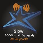RB2000-Slow Palestine