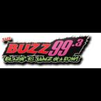 The Buzz 99.3 FM United States of America, Pleasantville