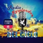 Radio Resplandor Del Cielo USA