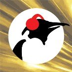 Pinguin Classics Netherlands, Hilversum