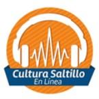 CulturaSaltillo en Línea Mexico, Saltillo