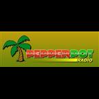 Pepperpot Radio Guyana