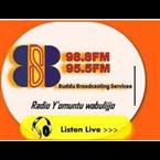 Buddu Fm 98.8 FM Uganda, Masaka