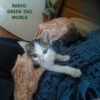 Radio green tao world Italy