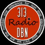 313 DBN Radio United States of America
