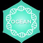 Positivity Ocean United Arab Emirates