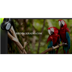 Bird Talk Radio United States of America