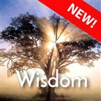 CALM RADIO - WISDOM - Sampler Canada