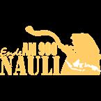 Ende Nauli Radio Indonesia, Medan