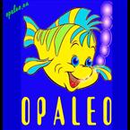 OPALEO France