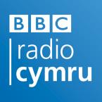 BBC Radio Cymru 104.6 FM United Kingdom, Swansea