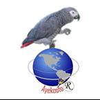 Parrot FM 101.1 Nigeria