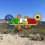 Radio Pura Banda Mexico