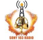 Sony 103 United States of America