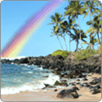 Hawaiian Rainbow USA