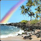 Hawaiian Rainbow USA