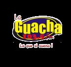 LA GUACHA Mexico, Huetamo de Nunez