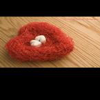 The Love Nest On Fubar.com United States of America