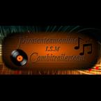 piraten team online Netherlands