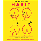 The Power of Habit: Why We Do What We Do in Life and Business USA