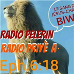 RADIO PELERIN875 USA