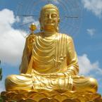 Zen Patriarch USA
