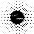 Punto Radio Mexico