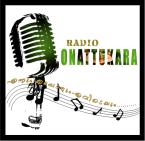 Radio Onattukara India