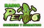 PEPINO SONIDERO Y ROMANTICO RADIO United States of America
