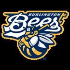 Burlington Bees Baseball Network USA