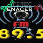 ESTEREO RENACER RADIO 89.5 FM USA, Ellenville