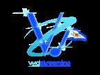 ViVid Streaming United States of America