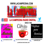 La Campeona Radio Digital 94.3 FM USA, Chillicothe