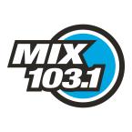 MIX 103.1 103.1 FM United States of America, George