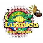 Radio Ludnica USA