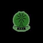 DBS Radio 88.1 FM Dominica, Roseau