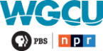 WGCU Classical 90.1 FM United States of America, Fort Myers